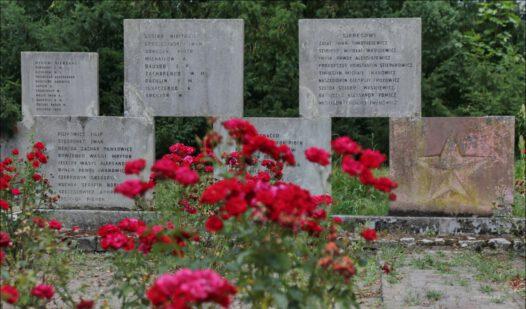 Gryfino, aleja Wojska Polskiego, cmentarz żołnierzy Armii Czerwonej