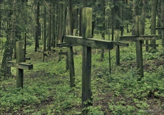 Białoruś, Kuropaty pod Mińskiem. Masowe groby ofiar stalinowskich represji politycznych z lat 1937 – 1941